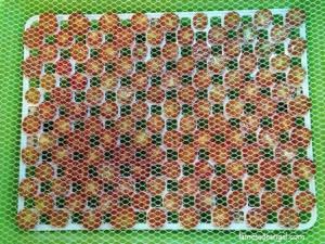 tomates secos3